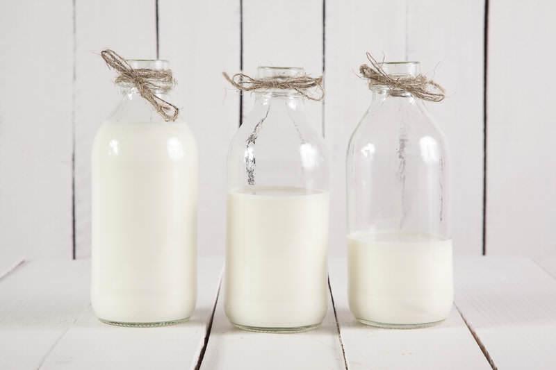 Mléko - ano nebo ne?