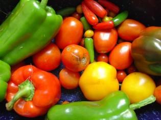 Zelenina na hubnutí