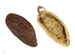 Kakao (superpotravina)
