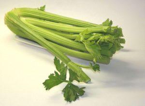 řapíkatý celer recepty
