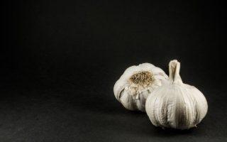 česnek zdravotní účinky