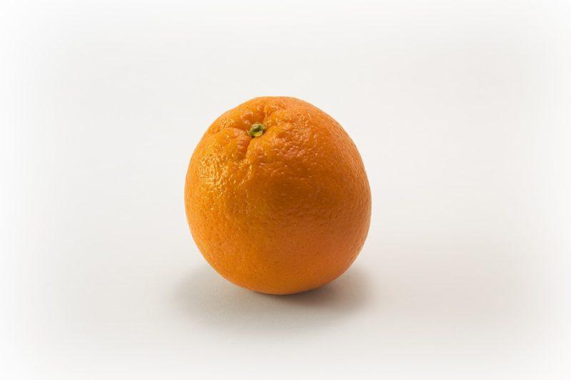 pomerancova_kuze