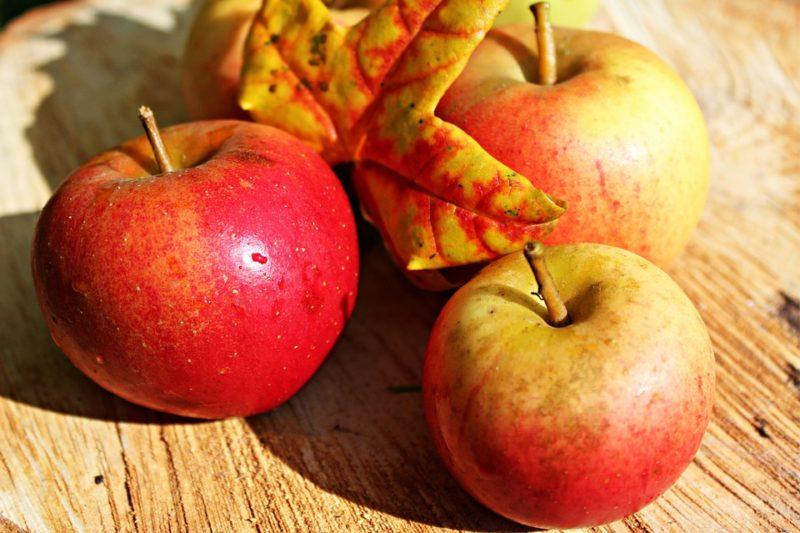 BIO jablka na ocet