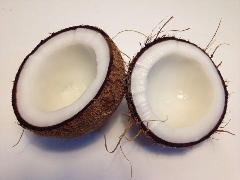 kokosový ořech - zdroj lisovaného kokosového oleje