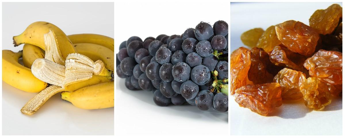 sladké druhy ovoce