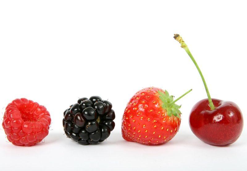 bobule při ABS dietě