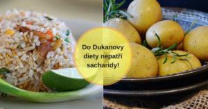 Dukanova dieta bez sacharidů