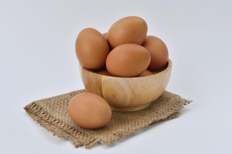 vajíčka jako zdroj bílkovin