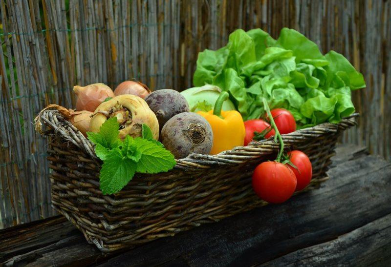 zelenina je základem každé diety