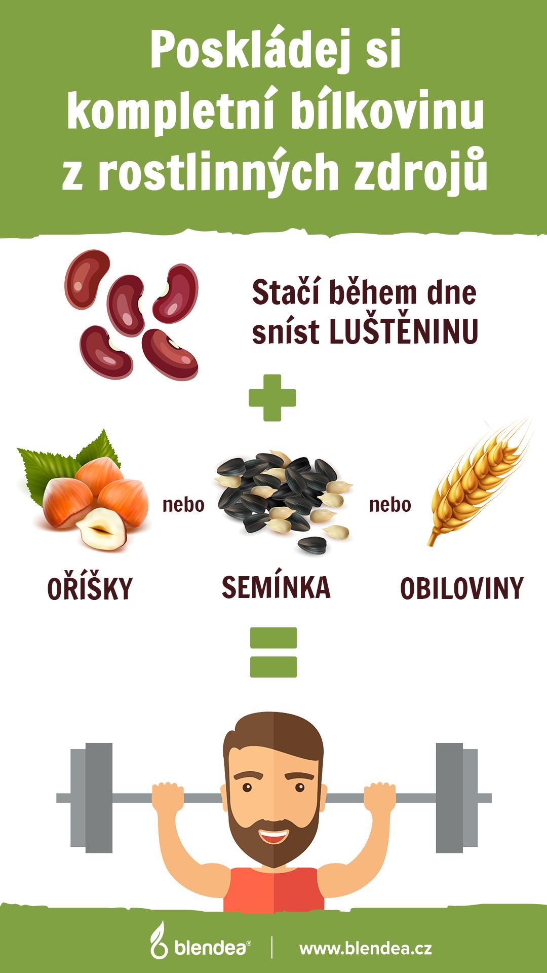 infografika bilkoviny