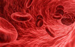 krev s obsahem železa