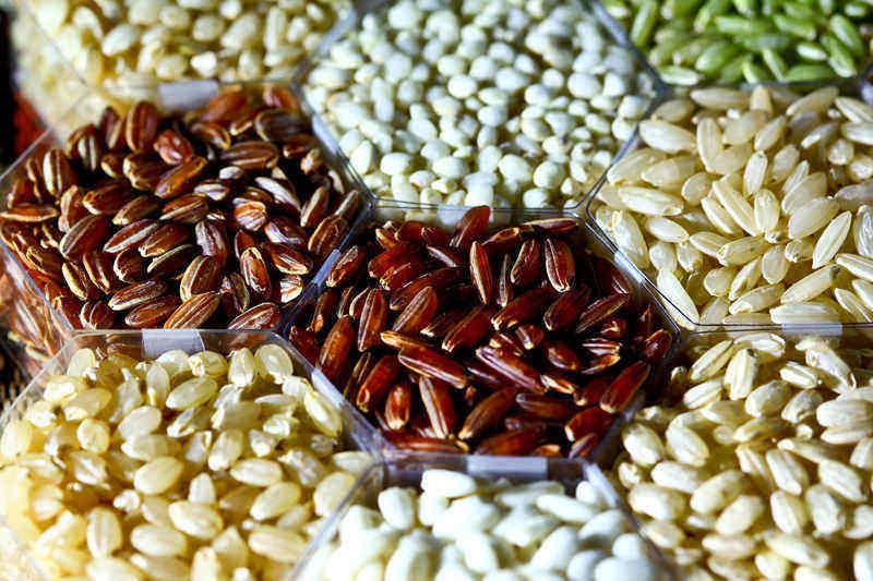rýžový protein