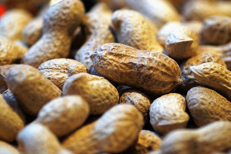 alergen arašídy