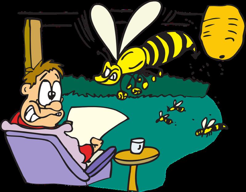 agresivní včely