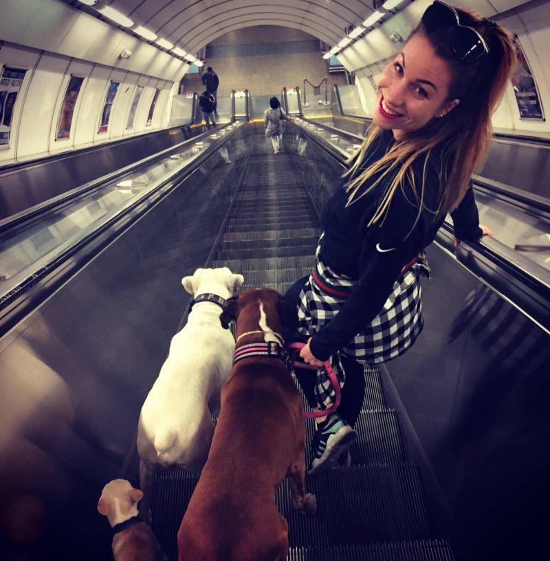 Míša Hodůlová a její psy
