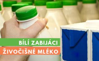 živočišné mléko