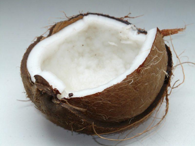 kokosová dužina pro přípravu mléka
