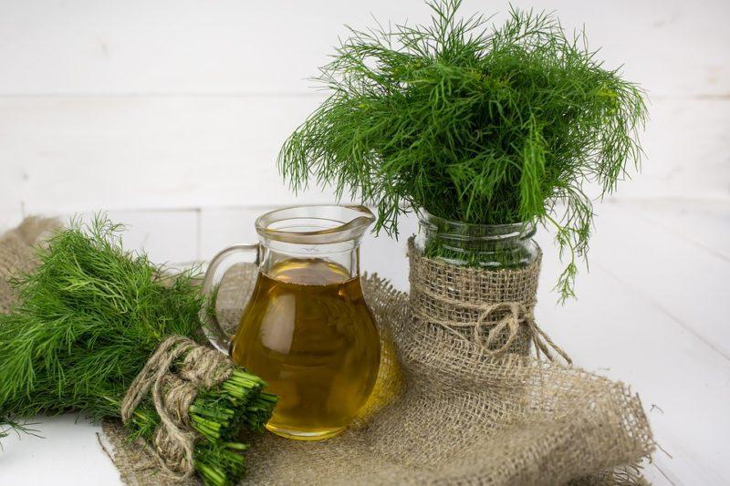 olivový olej během ketodiety
