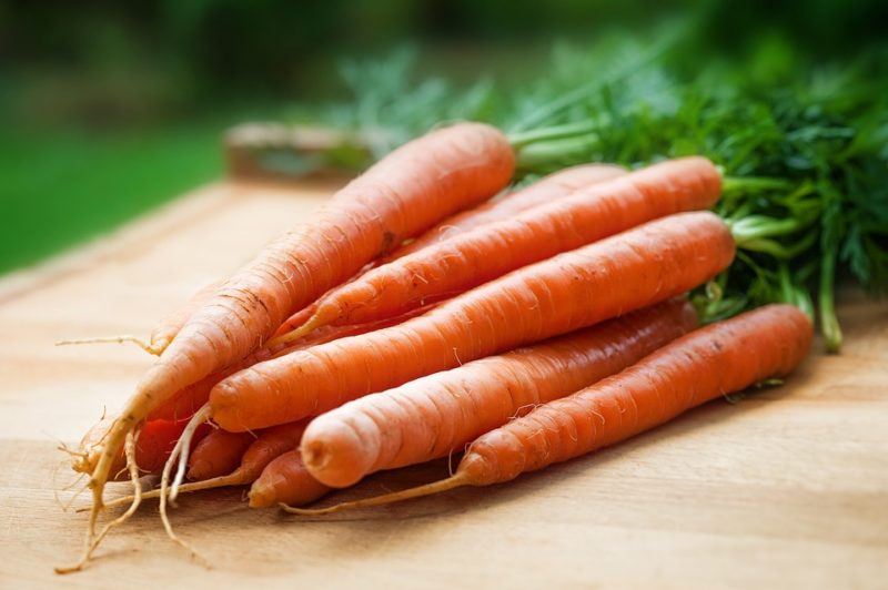 mrkev, zdroj vitamínu A