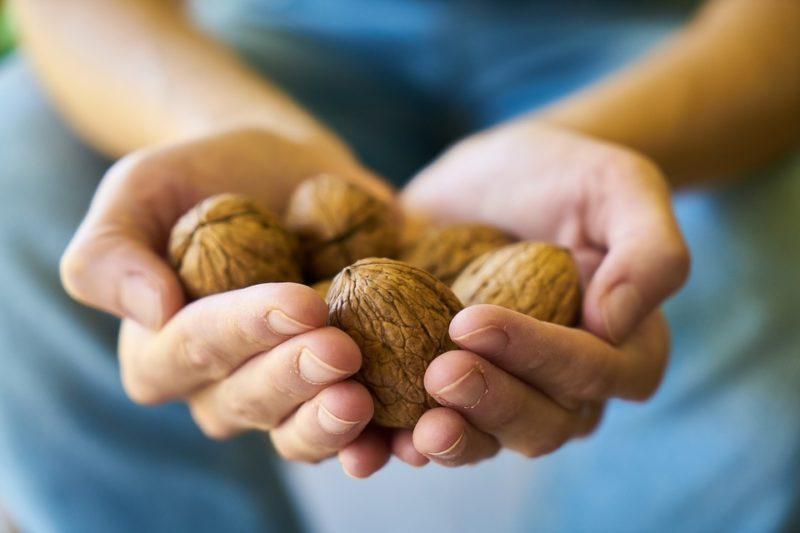 ořechy běheme vegetariánské keto diety
