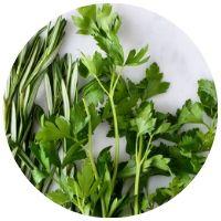 bylinky během šetřící diety