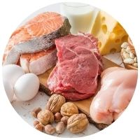 zdroje tuku a bílkovin